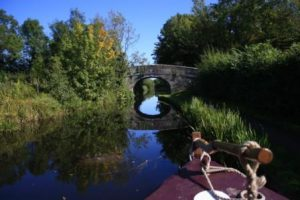 View from Countess, a horse drawn boat on the Montgomery Canal, by Bywater Cruises, Maesbury Marsh.
