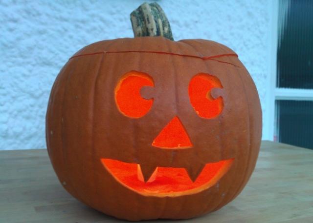 Pumpkin Lantern - Pant Today