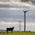 National Grid Windfarm