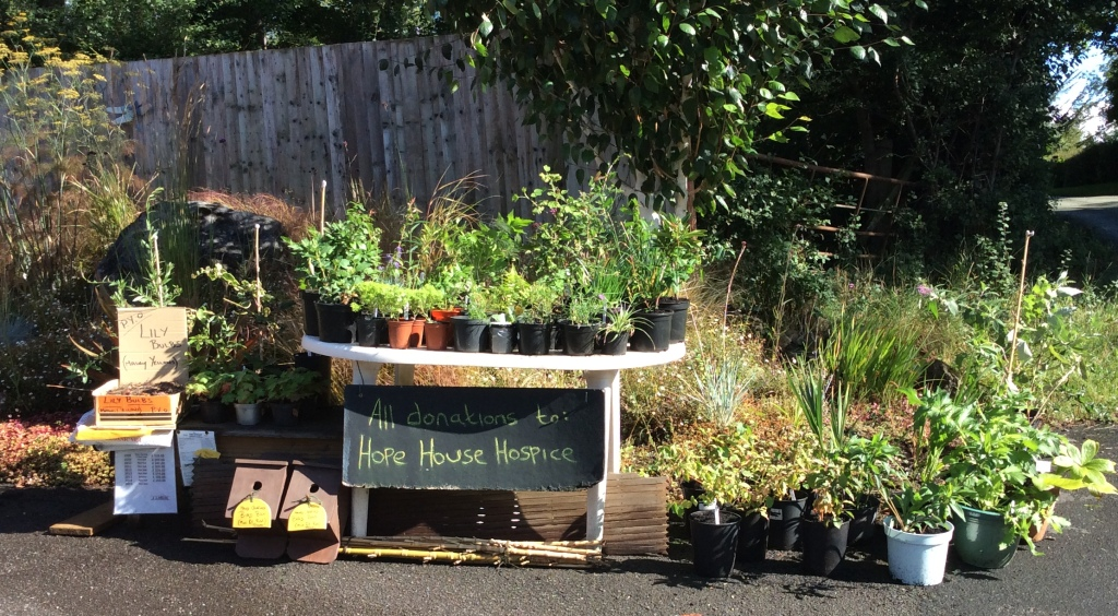 Growing funds for Hope House Children's Hospices