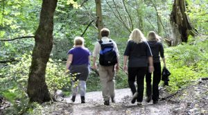 Guided walk exploring Llanymynech Lime Kilns @ British Waterways (Canal & River Trust) car park off the A483 in Llanymynech